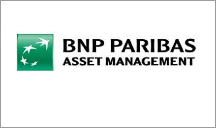 logo for bnp copy